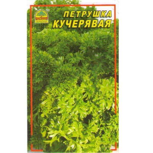 petrushka-kucher