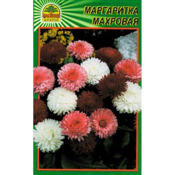 Насіння країни Маргаритка махровая - 100шт.