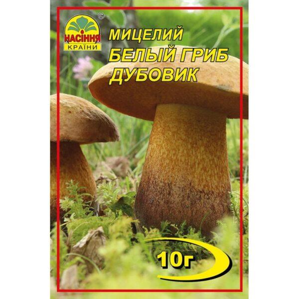Насіння країни Белый гриб Дубовик - 10г