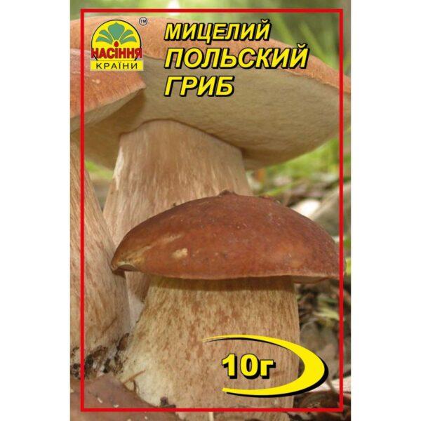 Насіння країни Польский гриб - 10г
