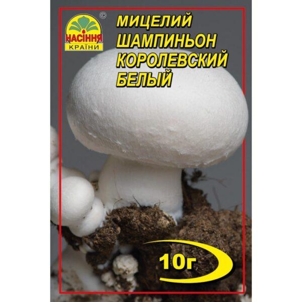 Насіння країни Шампиньон королевский белый - 10г