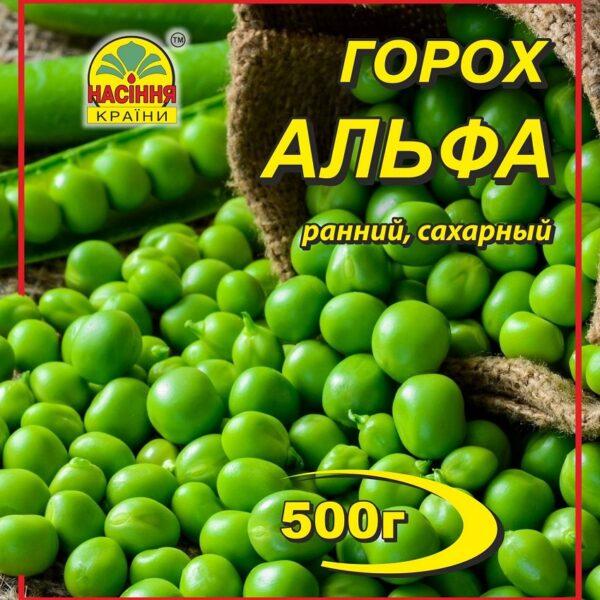 korobka_gazon_sportivno-igrovoy_2020