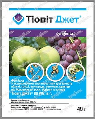 tiovit-dzhet_1.800x600w