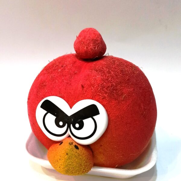 angry_birds-1