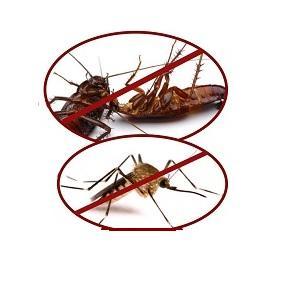 Защита от бытовых насекомых