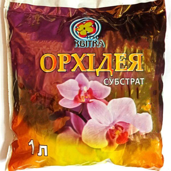 kora-orhid.1-l
